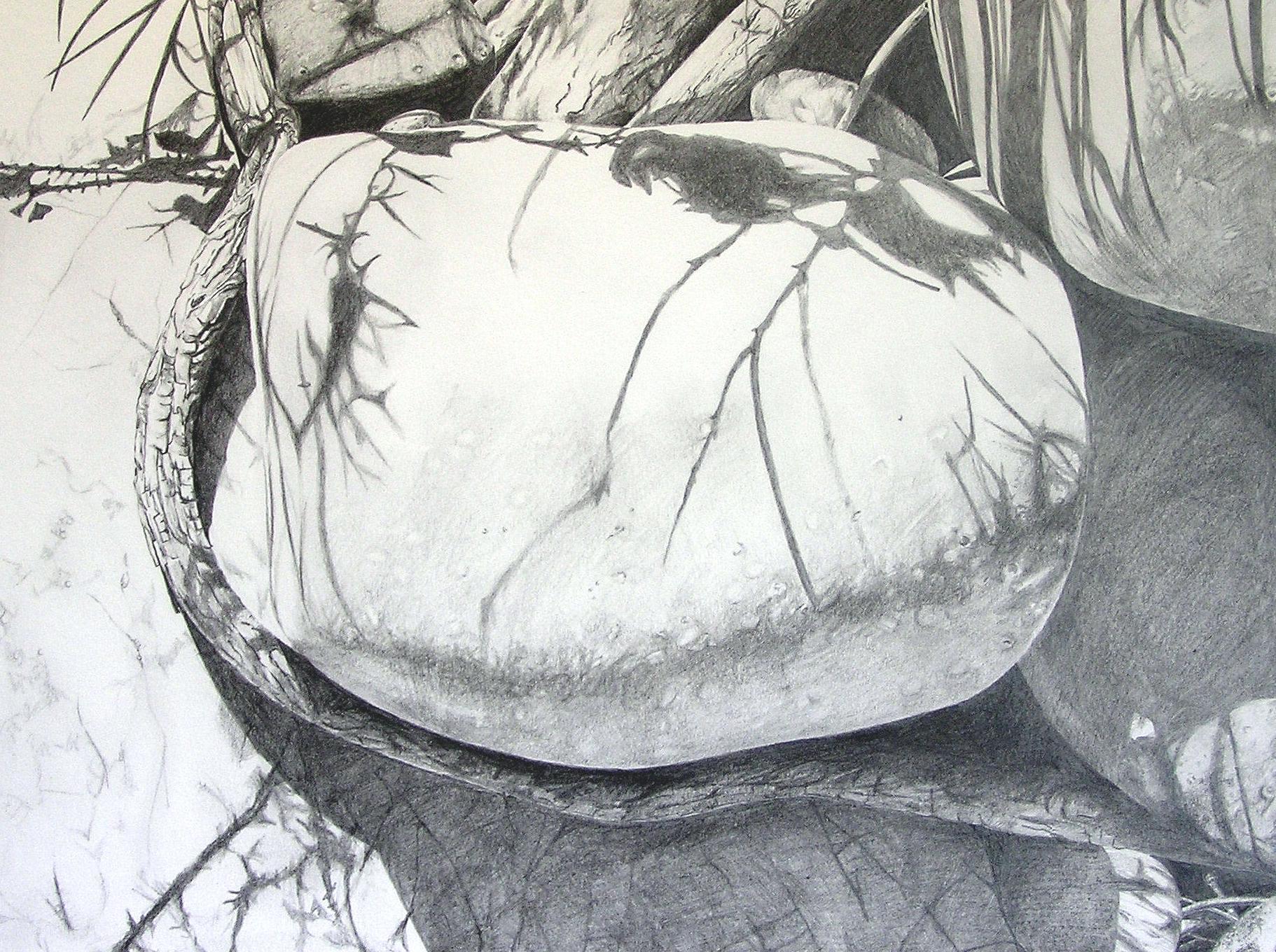 Stein in der Sonne / Bleistift / 40 x 50 cm