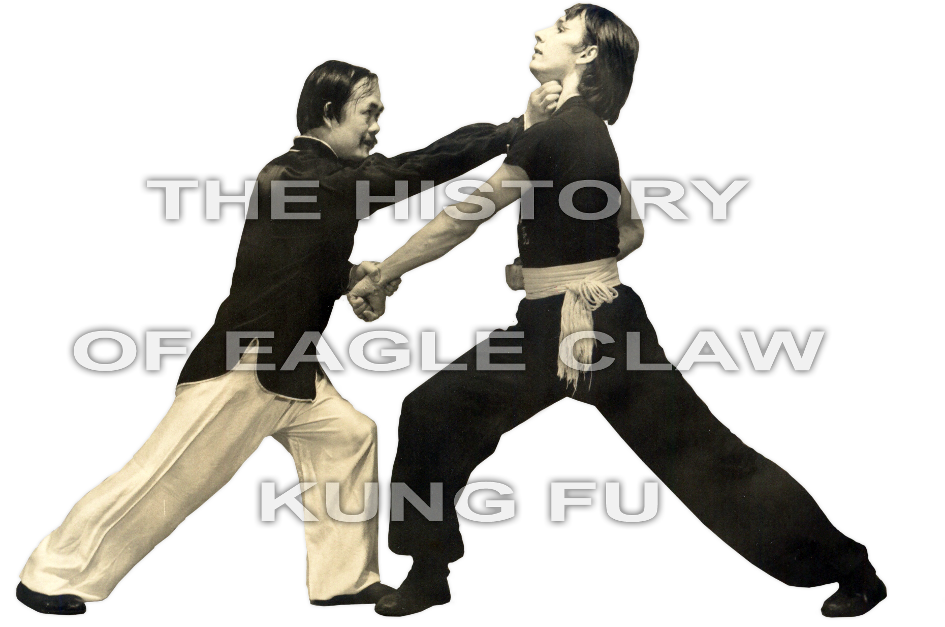 Kung Fu Eagle Style History of Eagle Claw ...