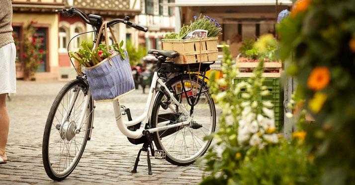 Hercules Bikes - City e-Bikes / Trekking e-Bikes / e-Mountainbikes / Compact e-Bikes / Cargo e-Bikes 2019