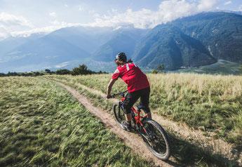 Haibike e-Bikes und Pedelecs in der e-motion e-Bike Welt in Dietikon