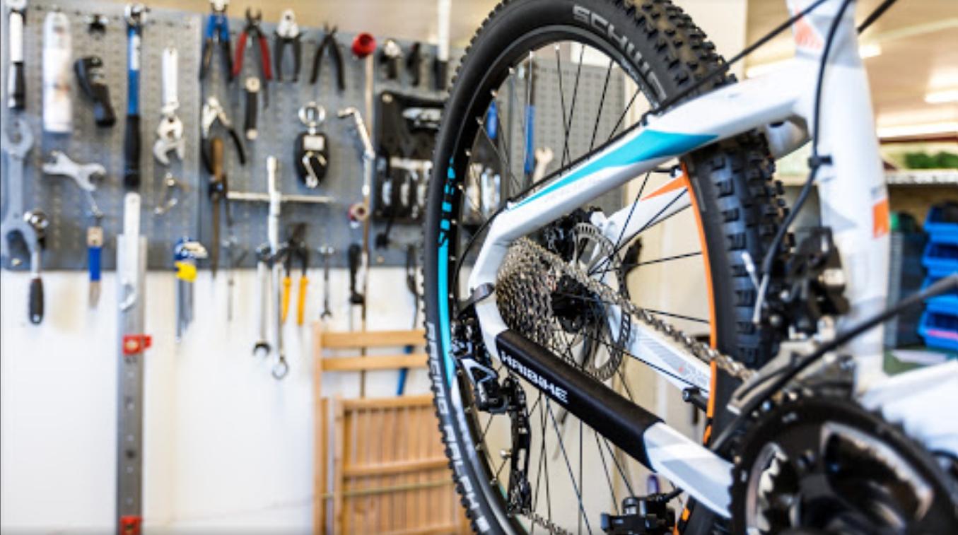 Service vom Experten für Ihr e-Bike