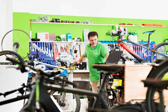 e-Bike Inspektion beim Schweizer Experten