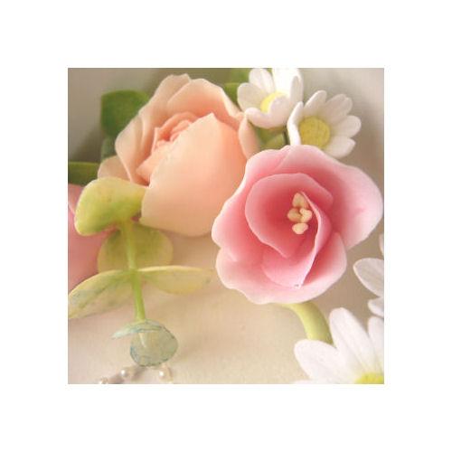ひな菊ピンク5