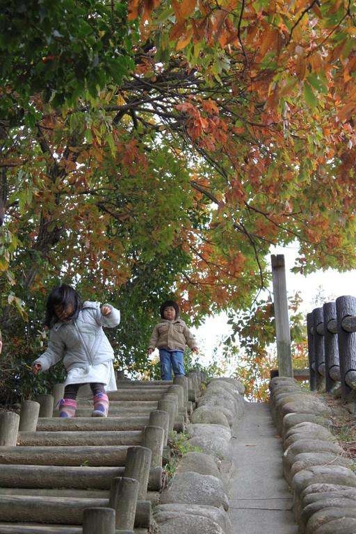 -12月- 木の葉の色の移り変わりを楽しみながら