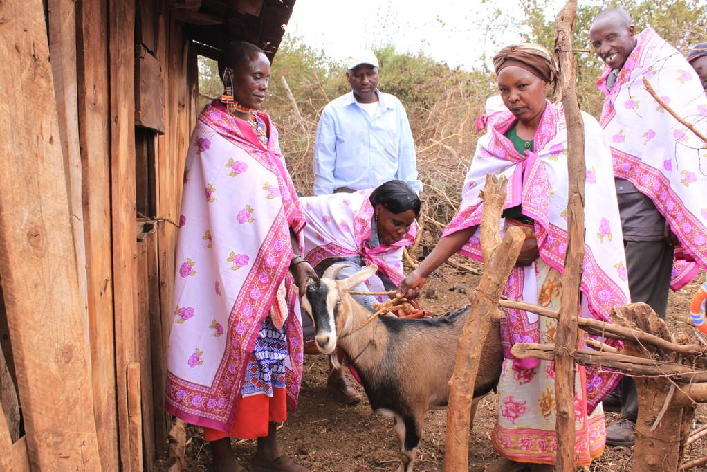 Die Frauengruppe führt nicht nur eine Baumschule, sondern auch einen kleinen Bauernhof mit Ziegen und Kühen