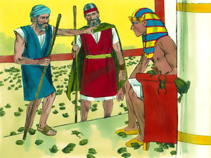 La deuxième plaie d'Egypte est liée au Nil ce sont les grenouilles qui infestent chaque espace le dieu Nil est incapable de lutter contre la plaie