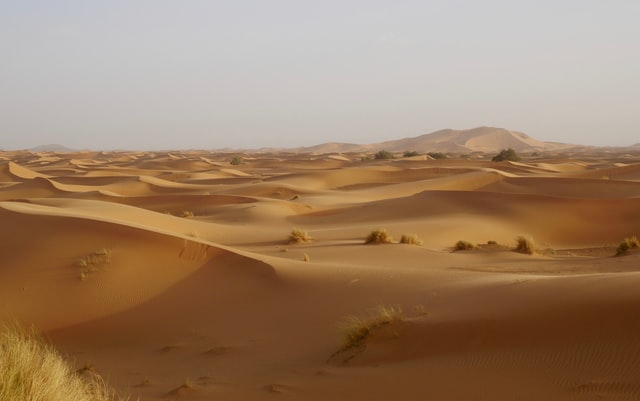 Le désert est un milieu hostile la Bible relate quelques récits dans le désert