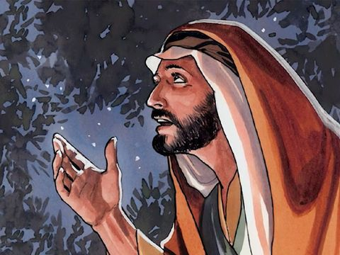 Jésus est resté fidèle à Dieu dans la tentation et n'accordera son adoration qu'à son Père qu'il appelle d'ailleurs son Dieu. Jésus n'est-il pas soumis à son Père ? Jésus n'est pas Dieu car Dieu ne peut pas être tenté!