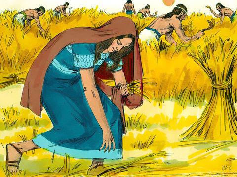 Ruth la Moabite ne ménage pas ses efforts. Elle a décidé de suivre Naomi sa belle-mère et son Dieu, Jéhovah.