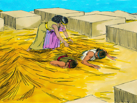 Les 2 espions envoyés par Josué se cachent sous des tiges de lin sur le toit de Rahab, la prostituée de Jéricho.