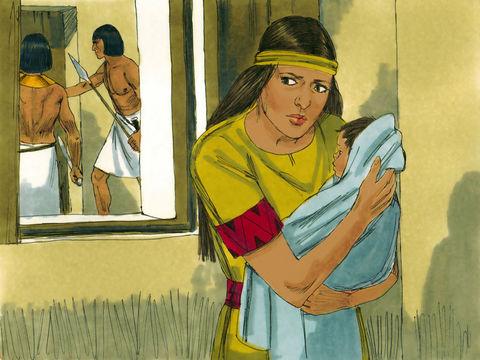 La mère de Moïse réussit à le cacher du massacre ordonné par le pharaon et touchant tous les bébés de sexe masculin.