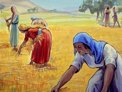Une partie des pauvres du pays sont alors restés à Jérusalem pour travailler comme vignerons et agriculteurs. Les Juifs qui sont laissés à Jérusalem sont placés sous l'autorité de Guedalia nommé gouverneur de la Judée. Guedalia sera assassiné.