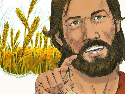 La Bible du Semeur parle d'hommes rachetés « pour être offerts comme des premiers fruits à Dieu et à l'Agneau », la Segond 21 évoque quant à elle «la première part réservée à Dieu et à l'Agneau ».