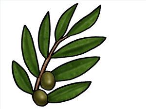 Les 2 témoins sont la source de la lumière, de l'énergie et donc de la connaissance de Dieu symbolisé par l'huile d'olive
