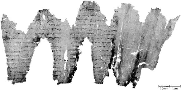 Le rouleau carbonisé d'En-Gedi contient un texte de 35 lignes correspondant au passage biblique des 2 premiers chapitres du Lévitique.