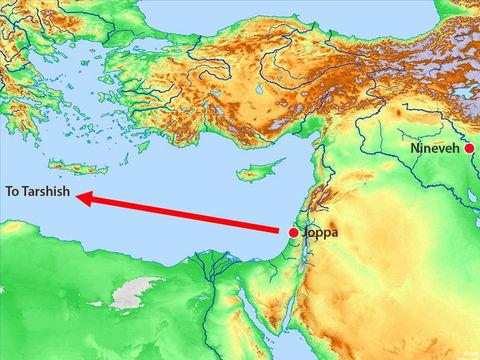 Yahvé a confié à Jonas la mission d'aller avertir les habitants de la grande ville païenne de Ninive que leur destruction est proche. Au lieu d'obéir à Dieu, Jonas se rend à Jaffa et prend un bateau en partance pour Tarsis.
