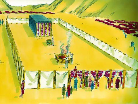 Le parvis du Tabernacle est fait avec 140 m de fin lin. Dans le parvis, se trouvent la cuve pour les ablutions et l'autel des sacrifices.