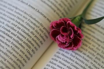Dans la Bible, le mot âme peut désigner le siège profond des émotions, des intentions, de la personnalité, de la pensée