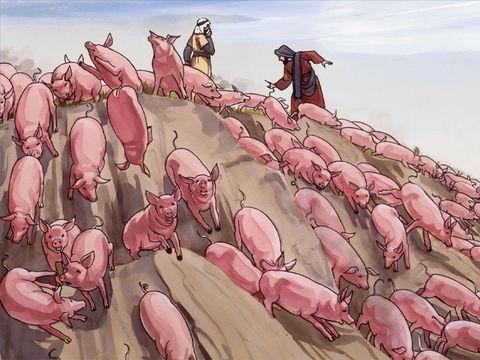 Les démons demandent à Jésus de pouvoir s'incarner dans un grand troupeau de porcs qui sont à proximité. Jésus leur dit : «Allez-y!» Les esprits mauvais sortent des 2 hommes pour entrer dans les porcs. Tout le troupeau se précipite du haut de la falaise.