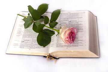 Les chrétiens unitariens ou antitrinitaires ont subi de terribles persécutions.