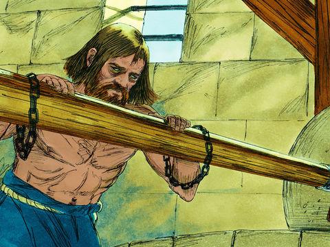 Samson a été condamné par les Philistins à tourner la meule dans sa prison, suprême humiliation pour le héros vaincu. Quelle fin de vie tragique après avoir été juge d'Israël pendant 20 ans !