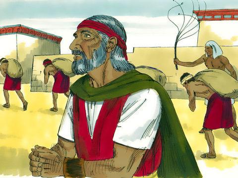 Exode 1 :14 : « et leur rendirent la vie amère par de rudes corvées : fabrication de mortier, confection de briques, travaux en tous genres dans les champs, bref, toutes les tâches auxquelles on les asservit avec cruauté.»