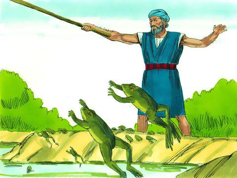 La deuxième plaie d'Egypte. Moïse prévient pharaon que les grenouilles vont envahir le pays. Les grenouilles sortent du fleuve, le Nil