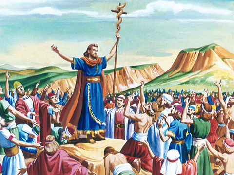 Moïse doit fabriquer un serpent en bronze et le placer sur une perche. Pour pouvoir rester en vie, les Israélites qui avaient été mordus par les serpents devaient fixer du regard le serpent en bronze dressé par Moïse.