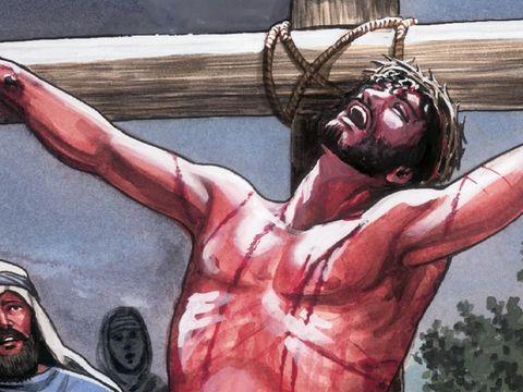 « ceci est mon sang, par lequel est scellée l'alliance. Il va être versé pour beaucoup d'hommes, afin que leurs péchés soient pardonnés.» Il a fallu que le Christ, tel un agneau pur et sans défaut, verse son sang précieux en sacrifice pour vous.