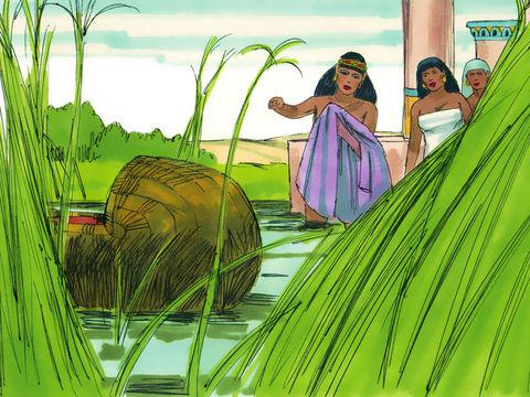 Moïse est sauvé des eaux du Nil