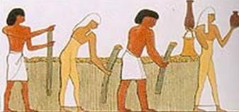 Le lin d'Egypte était très réputé. La Bible parle à plusieurs reprises du lin d'Egypte.