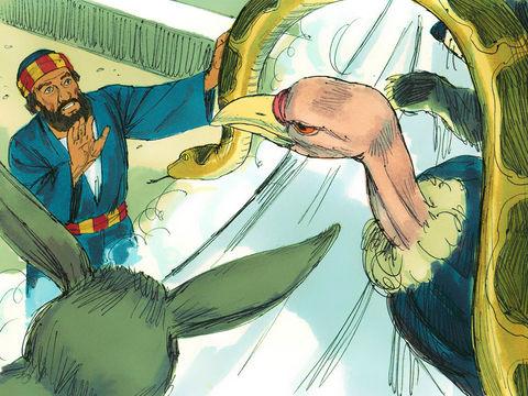 En l'an 36, à Jaffa, l'apôtre Pierre voit le ciel ouvert et une grande nappe contenant des animaux impurs. Par 3 fois, une voix lui demande de tuer et manger et de cesser de considérer impur ce que Dieu a déclaré pur.