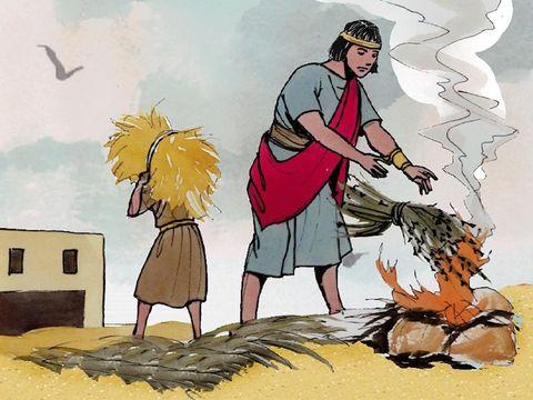 Le champ c'est le monde, les moissonneurs sont les anges. Ils vont récolter le bon blé, les chrétiens fidèles et brûler la mauvais herbe, ceux qui portent allégeance à la bête.