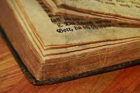Quand le parti mineur a démontré dans les Saintes Ecritures combien le baptême des nouveau-nés, la Trinité et la hiérarchie cléricale s'opposent au véritable christianisme, les seuls arguments de l'Eglise catholique ont été d'imposer la Terreur!