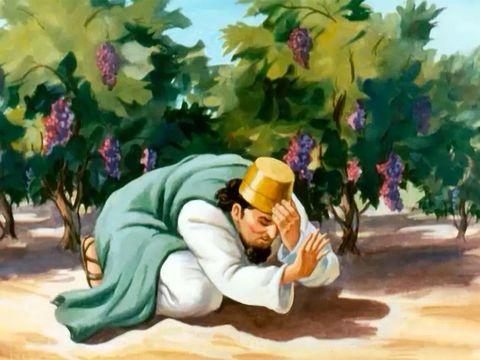 La parole de Dieu fut adressée à Elie le Thishbite: «As-tu vu qu'Achab s'est humilié devant moi? Eh bien, parce qu'il s'est humilié devant moi je ne ferai pas venir le malheur durant sa vie. Ce sera pendant la vie de son fils que je ferai venir le malheur