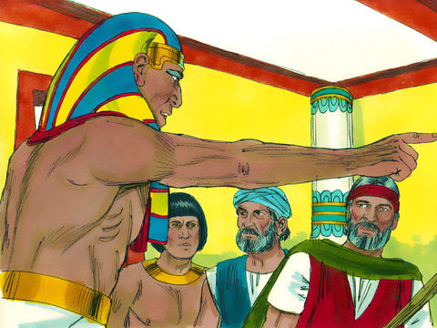 L'Egypte vient d'être frappée de 9 fléaux tous plus terribles les uns que les autres. Mais le pharaon s'obstine encore et refuse de laisser partir les Israélites. Une dixième plaie va le faire fléchir et finir d'humilier les dieux égyptiens.