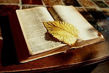 Dans la Bible, le mot âme peut désigner la vie, le principe de vie, l'essence même de la vie