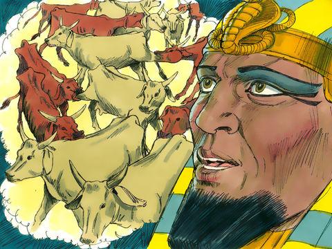 Le pharaon d'Egypte reçoit un rêve prophétique: 7 vaches grasses se font manger par 7 vaches maigres. 7 années d'abondance seront suivies par 7 années de famine.