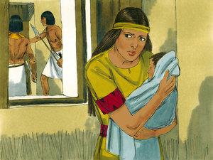 La Bible parle à plusieurs reprises du Nil, le plus long fleuve du monde avec presque 6700 km. Sans le Nil, L'Egypte ne serait plus qu'un désert. C'est dans le Nil que le pharaon a ordonné le massacre de tous les garçons nouveau-nés.