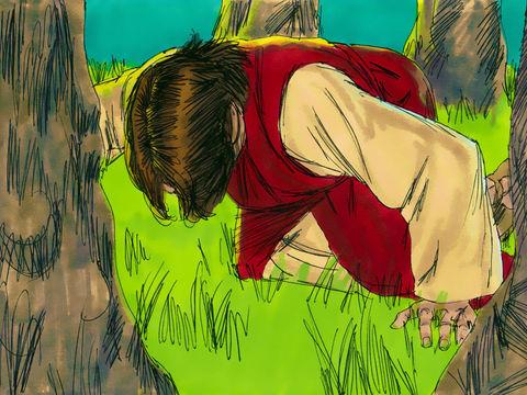 Jésus prie son Père, il est en agonie au jardin de Gathsémané.