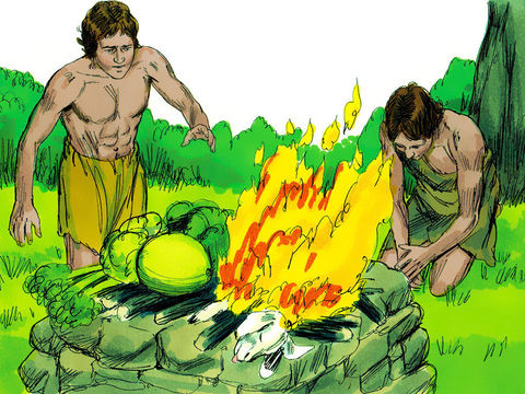 Caïn et Abel font chacun une offrande à Dieu. Caïn offre les produits des champs et Abel offre un agneau en sacrifice, c'est le sacrifice d'Abel qui est agréé