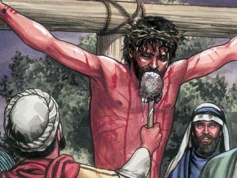 pour apaiser ma soif ils me donnent du vinaigre. L'ensemble de la Bible converge vers Jésus-Christ, le seul moyen de salut pour l'humanité.