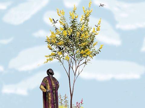 Le royaume des cieux ressemble à une graine de moutarde qu'un homme a prise et semée dans son champ. C'est la plus petite de toutes les semences, mais quand elle a poussé, elle devient un arbre, de sorte que les oiseaux du ciel viennent y habiter.