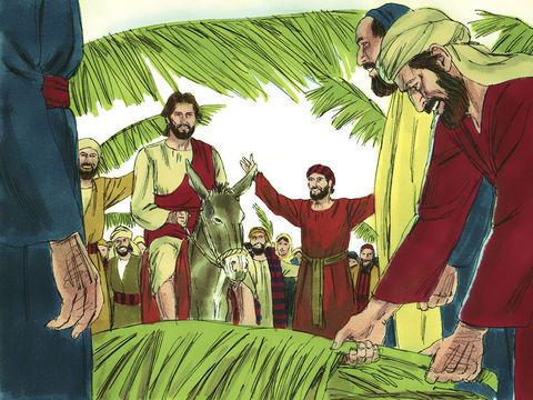Lors de l'entrée triomphale de Jésus à Jérusalem, près de Béthanie (mot qui signifie maison des dattes), des palmes furent agitées et étendues devant lui sur le sol en guise de tapis d'honneur. Les palmes accueillent Jésus chaleureusement !