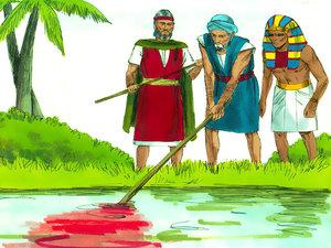 La première des 10 plaies va toucher directement le Nil considéré comme un dieu car il est la vie de l'Egypte, un pays désertique. Les eaux du fleuve se changent en sang, ce qui provoque la mort des poissons et de nombreux animaux aquatiques.