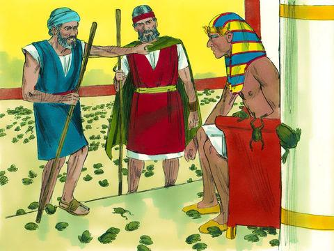 La deuxième plaie d'Egypte. Moïse prévient pharaon que les grenouilles vont envahir le pays. Les grenouilles vont jusqu'à la chambre du pharaon.