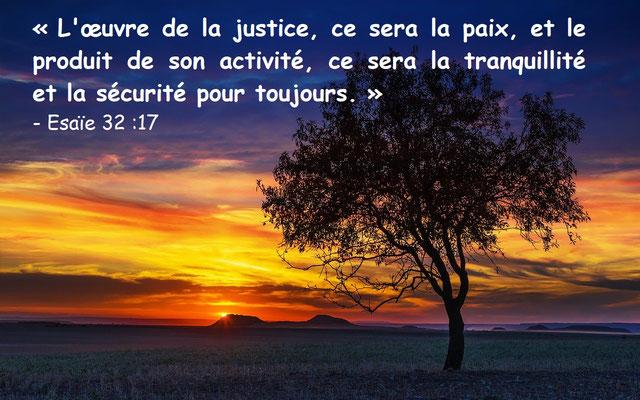 Le fruit de la justice sera la paix. L'effet de la justice, ce sera la tranquillité et la sécurité à tout jamais. Mon peuple habitera un domaine de paix dans des demeures sûres, dans des maisons tranquilles.