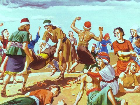 """Les Israélites se plaignent de """"cette misérable nourriture"""", la manne tombée du ciel, Jéhovah leur envoie des serpents venimeux. Beaucoup d'Israélites meurent. Le peuple regrette ses paroles et demande à Moïse de prier Dieu pour eux."""