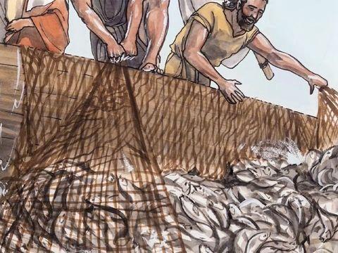 Simon Pierre et son frère André étaient tous deux pêcheurs sur le lac de Galilée, ainsi que Jacques et son frère Jean, les fils de Zébédée. Ce sont les 4 premiers apôtres de Jésus. Ils ont laissé leur métier pour suivre Jésus.