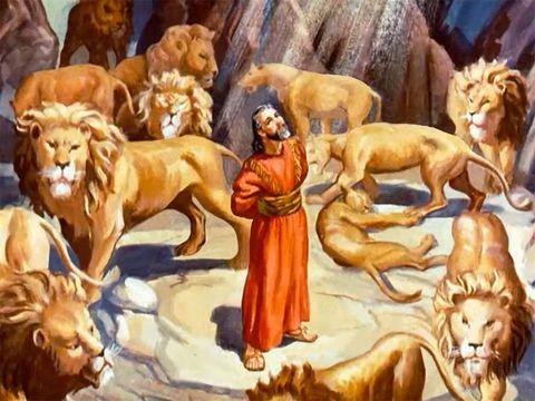 Daniel dans la fosse aux lions. Un ange a fermé la gueule des lions. Daniel a été sauvé.